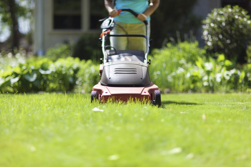 Lawn mowing is crucial